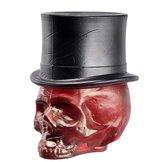 Still Life Skull Hat Blood