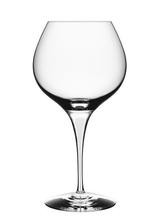 Intermezzo Satin Bouquet Wine Tasting Glass